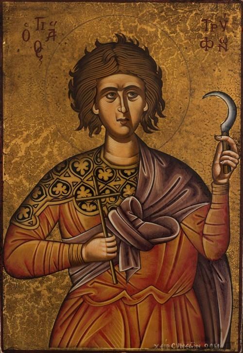 Ο εορτασμός του Αγίου Μάρτυρος Τρύφωνος